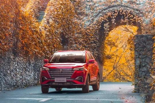 买车回家过年 这几款10万级自主SUV也能开出高级范!