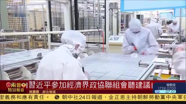 习近平参加经济界政协联组会听建议