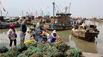 連云港海域部分網具捕撈開海