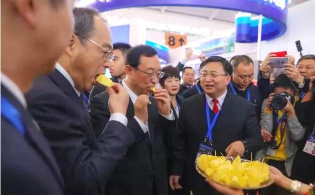 国家文旅部部长雒树刚为昭通苹果点赞
