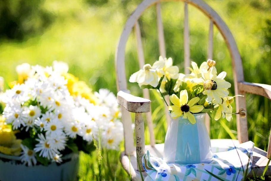 三亚花卉旅游节吸引世界客商共绘产业新蓝图