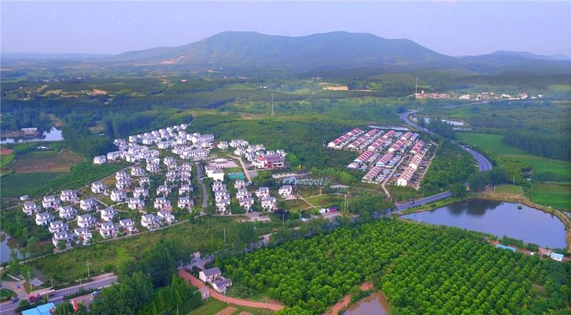 57森林村庄