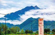 秦岭生态环境保护专项巡视完成 存在四个方面问题