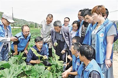 原标题:庆城县科技局举行了瓜菜种植技