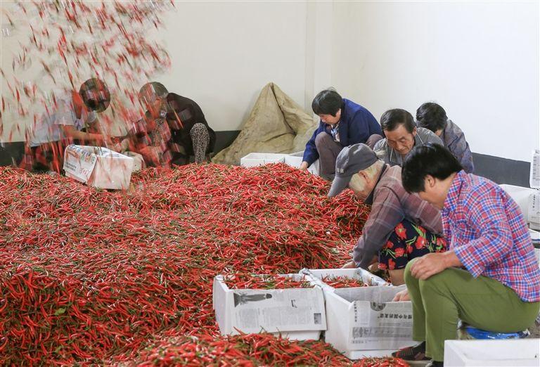 http://www.ahxinwen.com.cn/yulexiuxian/63795.html