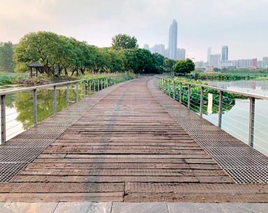 月湖綠道為何不讓騎自行車 園區:按步道設計只能走人