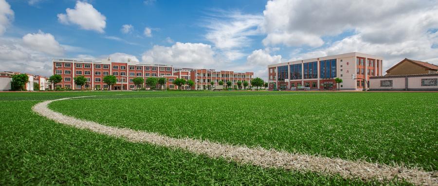 青岛启动中小学阳光校园创建活动,立足学生全面发展