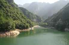 森林覆盖率从30.92%到43.06% 三秦大地绿意渐浓
