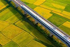 航拍高鐵列車飛馳在江西金色田園