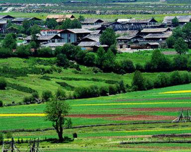 每天一分钟 知晓安徽事 安徽今年底基本完成村庄分类工作