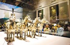 秦兵马俑展首次走进泰国 展品历史跨度近1000年