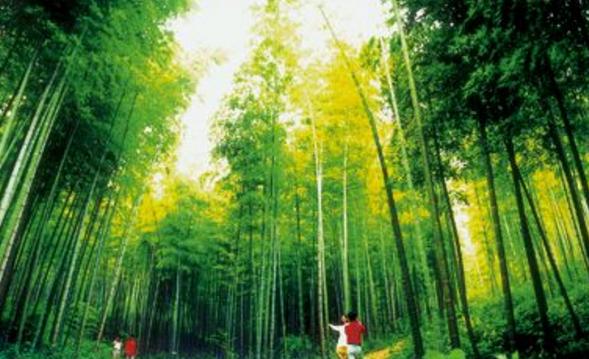 濮塘自然风景区
