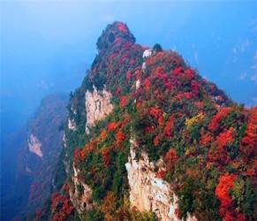 2019焦作(青天河)红叶节启动