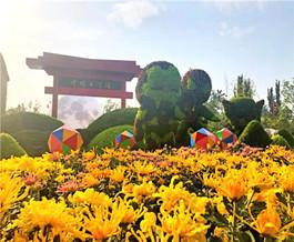 中国开封第八届国际菊花展在清明上河园开幕