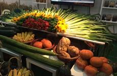 中国(陕西)贫困地区特色农产品品牌推介会举办