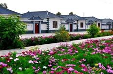 陕西发布9项规范规程 乡村振兴领域有了地方标准