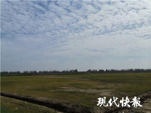 江苏沙钢花85亿环保大整容 长江