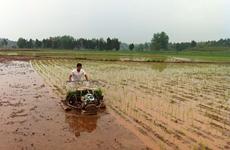 陕西省新型职业农民近9万人 去年人均年收入达2.8万