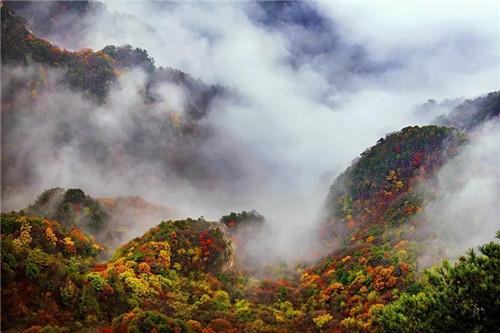 快抓住秋天的尾巴 去龙峪湾寻觅秋的足迹吧