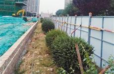 擅自占用城市绿地 西安未央金茂府项目被罚6万元