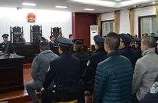 首犯获刑18年6个月 陕西城固又一恶势力犯罪集团被宣判
