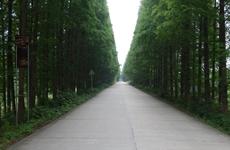 """陕西省交通运输厅等八部门共同推动""""四好农村路""""高质量发展"""