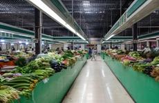 陕西省发改委发布价格监测显示:蔬菜价格小幅下降