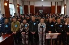 何红泉等17人恶势力犯罪案在勉县公开宣判 曾敲诈勒索抢劫