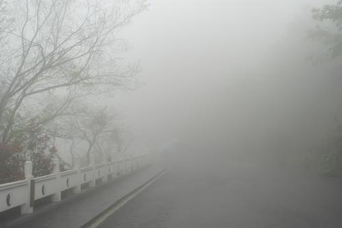 大雾黄色预警!今日这些地方有大雾