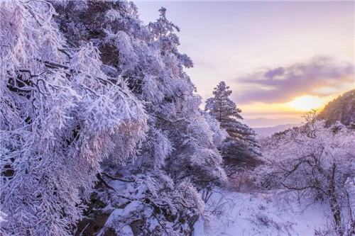 到尧山赏雪景、打雪仗、泡温泉
