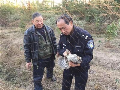 三只鳥被網住 黃山民警及時解救