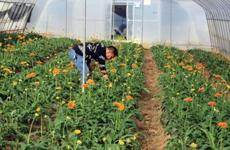 西安返乡创业带动效应初显 78.4%返乡人员愿在家门口创业