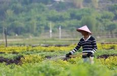 落实国家生态护林员政策 1.5分彩东京1.5分彩分析_腾讯分分彩计划 生态扶贫惠及170万贫困人口