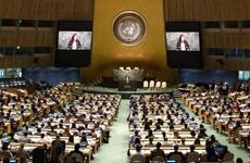 西安选拔10名优秀青年 在联合国代表中国青年发声