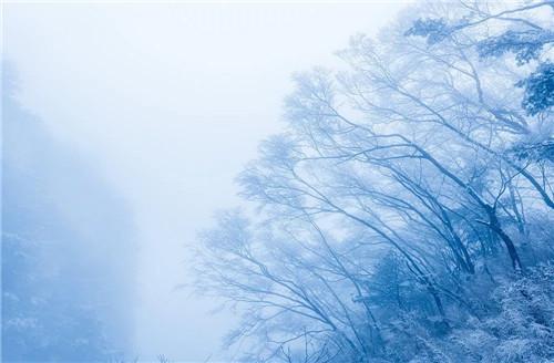 """冬日""""开花""""?嵩县白云山也太美了吧!"""