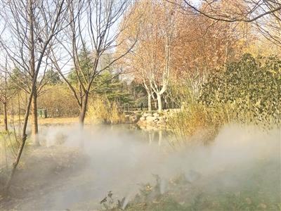 郑州植物园雾森系统正式投用
