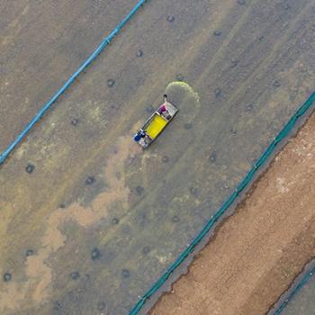 蚌埠五河:稻花香里虾蟹肥