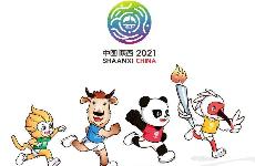 第十四届全运会正式向社会征集2—3家特许运营商