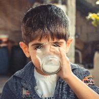 高钙奶有机奶脱脂奶有什么区别?