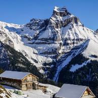 我听到了阿尔卑斯山顶的音符!