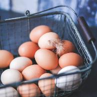 鸡蛋价格上涨,价格何时回落?