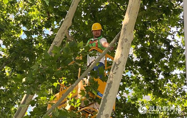 烈日下的漯河园林人 用辛苦和汗水呵护城市绿化