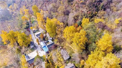 嵩县新增2个A级旅游景区 快看看你去过吗?