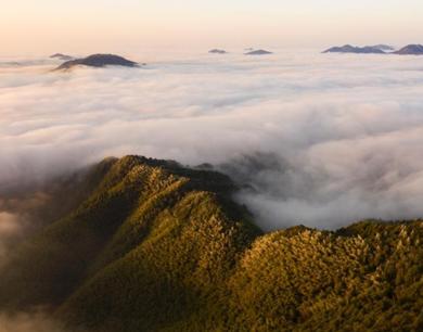 崇义阳岭之巅云海雾凇景观