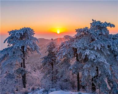 安徽霍山:日出雾凇别样美(组图)