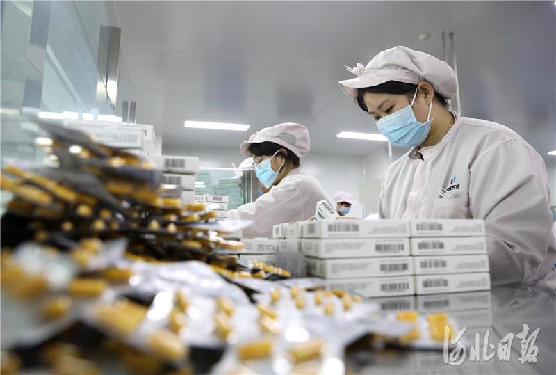 河北石家庄:开足马力生产 全力保障市场需求