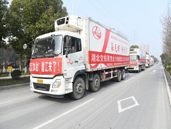 """潜江""""爱心车队""""驰援武汉"""