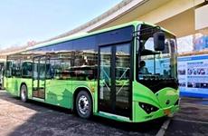"""西安公交开通12条医护专线 向""""白衣天使""""提供免费服务"""