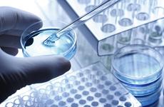 西安举行生物医药产业项目网络签约仪式