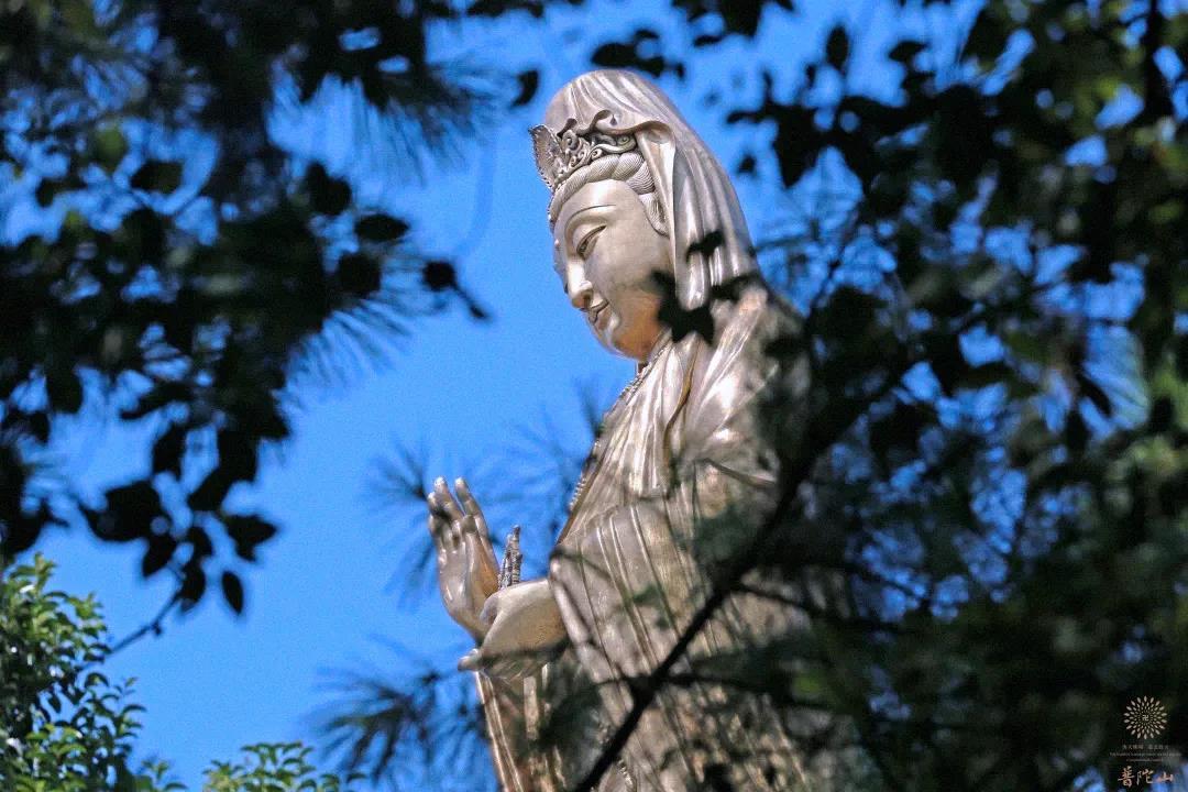 南海普陀接待禅寺恭祝观音菩萨圣诞